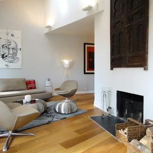 Exemple d'une salle de séjour éclectique ouverte et de taille moyenne avec un mur blanc, un sol en bois clair, une cheminée standard et un manteau de cheminée en plâtre.
