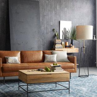 Idee per un soggiorno minimal di medie dimensioni e aperto con pareti grigie, pavimento in cemento e nessun camino