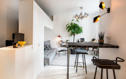 Paris Houzz Tour: Small Studio Leaves Room for Luxurious Details