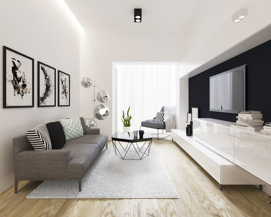 Small Modern Living Room Design Ideas Remodels Photos Houzz