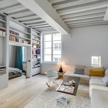 Apartment in historical Paris