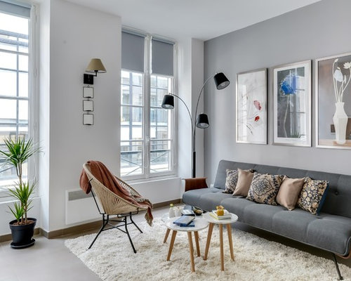 Grey Brown Living Room Houzz - Grey and brown living room