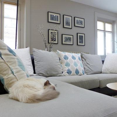 quel rev tement de canap choisir quand on a des animaux. Black Bedroom Furniture Sets. Home Design Ideas