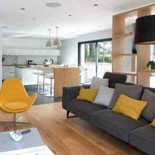 Immagine di un grande soggiorno design aperto con sala formale, pareti bianche, pavimento in legno massello medio, nessun camino e nessuna TV