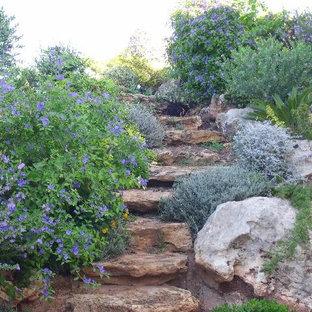 カターニア/パルレモの地中海スタイルのおしゃれな階段の写真