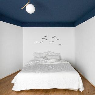 Mittelgroßes Maritimes Hauptschlafzimmer ohne Kamin mit blauer Wandfarbe, braunem Holzboden und braunem Boden in Hamburg
