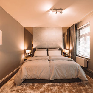 ライプツィヒの中サイズのコンテンポラリースタイルのおしゃれな主寝室 (茶色い床、グレーの壁、クッションフロア、暖炉なし) のインテリア