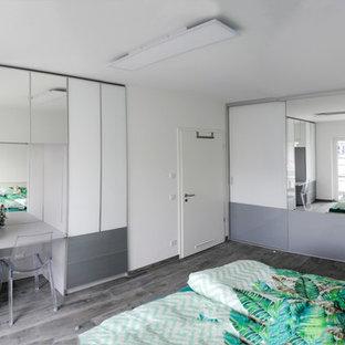 Mittelgroßes Modernes Hauptschlafzimmer ohne Kamin mit weißer Wandfarbe, Schieferboden und grauem Boden in Sonstige