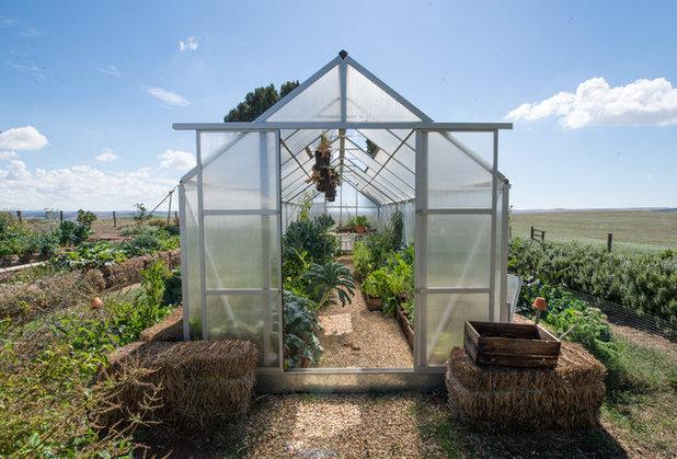 Farmhouse Shed by Jeni Lee