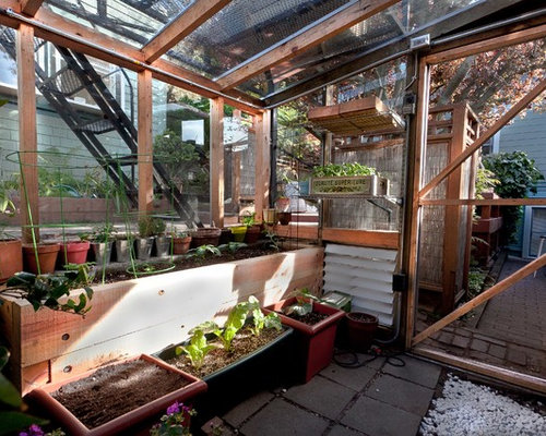 Delightful Trendy Greenhouse Photo In San Francisco