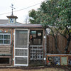 Quirky Meets Practical in a Dallas Chicken Coop