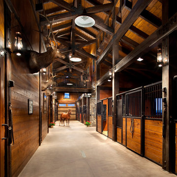 Equestrian & Cattle Facility