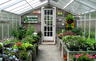 Room of the Day: An Old Shed Becomes a Spa and Greenhouse