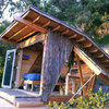 Great Escape: A Tiny, Off-the-Grid Hideout in the California Woods