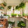 10 solutions pour arroser ses plantes pendant les vacances