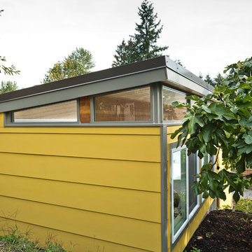 Modern-Shed man cave and home office