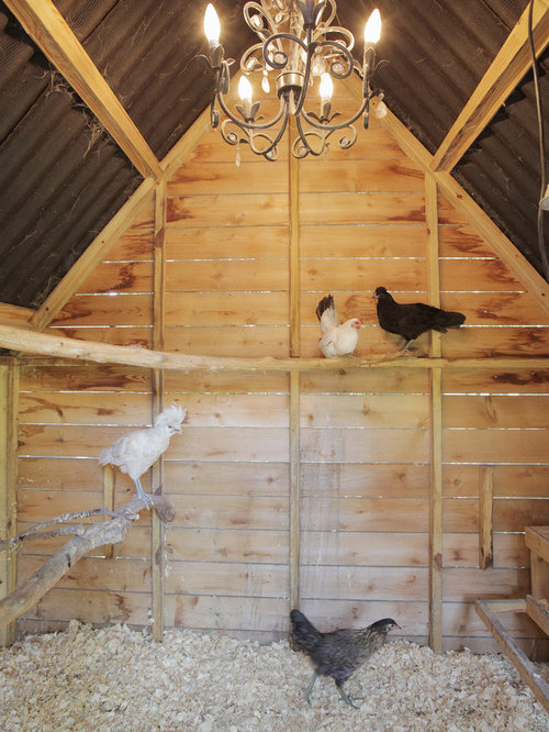 Chicken Roost Ladder Home Design Ideas Pictures Remodel