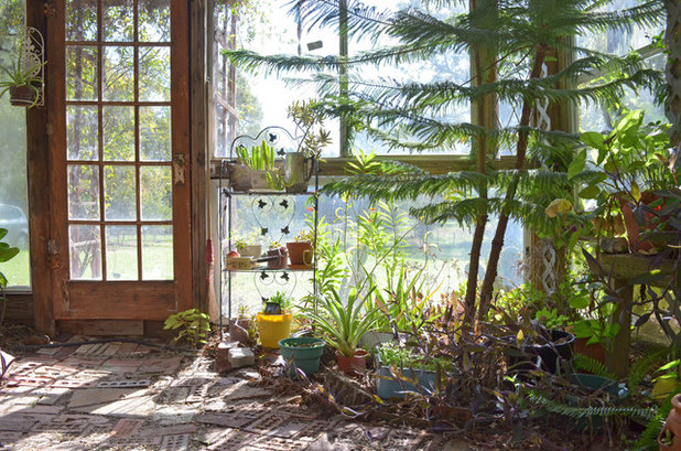 Eclectic Shed by Sarah Greenman