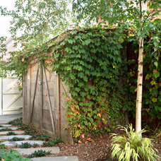 Transitional Garage And Shed by Natalie DeNormandie