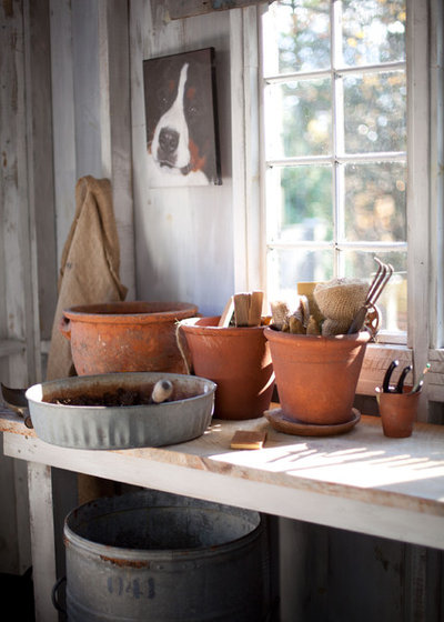 Farmhouse Shed by Theresa Fine