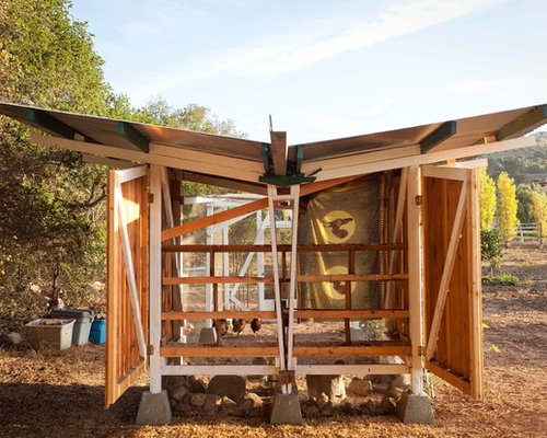 contemporary chicken coop photos - Chicken Coop Design Ideas