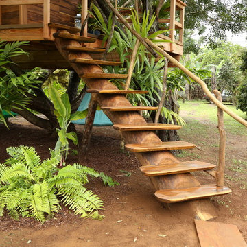 Treehouse Masters Project