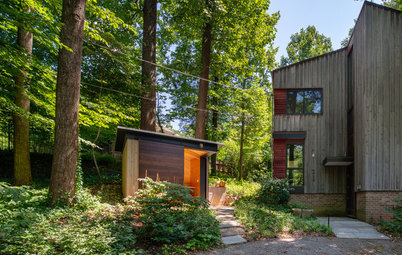 Stylish Shed Sits in a Woodland Garden Made to Slow Runoff