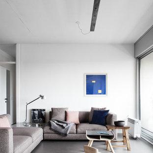 Esempio di un soggiorno nordico con sala formale, pareti bianche, pavimento in cemento e pavimento grigio