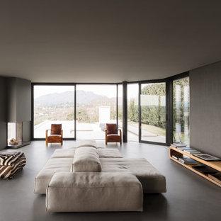 Foto di un soggiorno minimalista con pareti grigie, pavimento in cemento, camino ad angolo e pavimento grigio