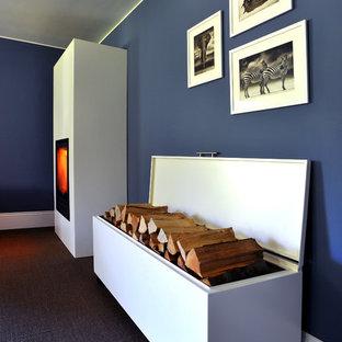 Contenitore per legna e copertura caminetto