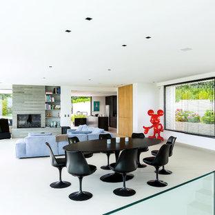 Esempio di un ampio soggiorno design aperto con sala formale, pareti bianche, camino lineare Ribbon, cornice del camino in pietra, TV autoportante e pavimento bianco
