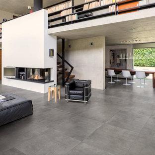 Ispirazione per un grande soggiorno moderno con pavimento grigio