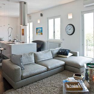Foto di un ampio soggiorno minimal aperto con pareti bianche e parquet scuro