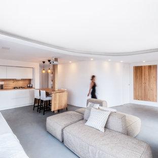 他の地域の中サイズのビーチスタイルのおしゃれなLDK (白い壁、コンクリートの床、コーナー設置型暖炉、漆喰の暖炉まわり、グレーの床) の写真