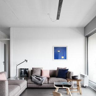 Foto di un soggiorno design di medie dimensioni e aperto con pareti bianche, pavimento in cemento e pavimento grigio