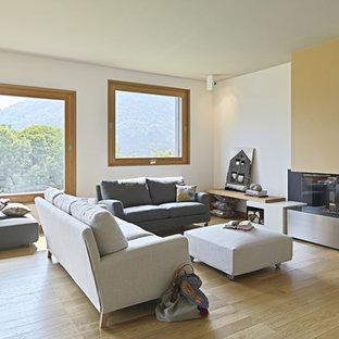 Ispirazione per un grande soggiorno minimal chiuso con pavimento in legno massello medio, cornice del camino in intonaco, camino classico e pareti bianche