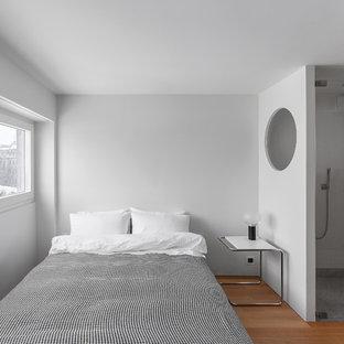 Imagen de dormitorio principal, actual, pequeño, con paredes blancas y suelo de madera en tonos medios