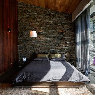 Diseño de habitación de invitados contemporánea, de tamaño medio, sin chimenea, con paredes marrones y suelo de baldosas de porcelana