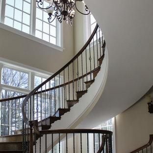 ワシントンD.C.の巨大な木のトラディショナルスタイルのおしゃれならせん階段 (木の蹴込み板) の写真