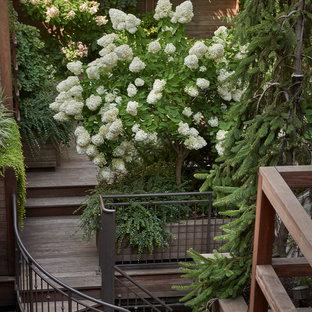 Foto de escalera de caracol, actual, pequeña, con escalones de madera y barandilla de metal