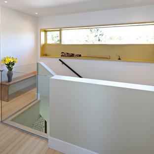 Foto di una scala a rampa dritta contemporanea di medie dimensioni con pedata in legno, alzata in legno e parapetto in vetro