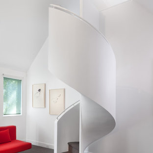 Inspiration for a small transitional carpeted spiral staircase remodel in DC Metro with carpeted risers
