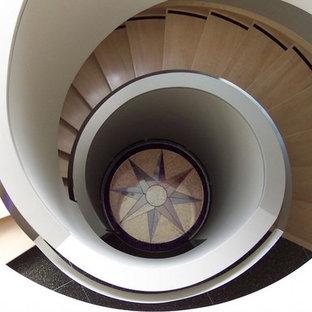 Foto de escalera de caracol, actual, grande, con escalones de madera y contrahuellas de madera
