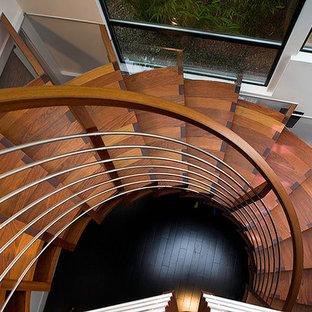 サンフランシスコの広い木のモダンスタイルのおしゃれな階段 (金属の手すり) の写真
