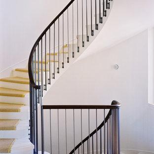 Ejemplo de escalera curva, moderna, grande, con escalones enmoquetados y contrahuellas de madera