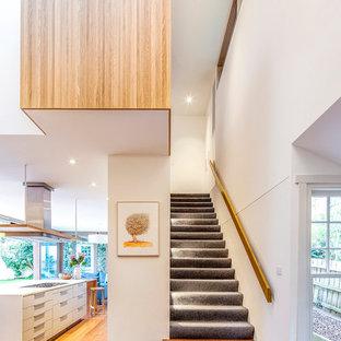 メルボルンのカーペット敷きのコンテンポラリースタイルのおしゃれな直階段 (カーペット張りの蹴込み板、木材の手すり) の写真