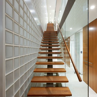 Inspiration for a mid-sized contemporary wooden straight staircase remodel in Sydney