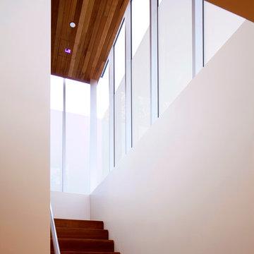 Brooktree / Los Angeles Mid-Century Modern