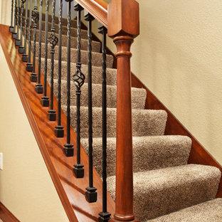 ミルウォーキーの中サイズのカーペット敷きのトラディショナルスタイルのおしゃれな直階段 (カーペット張りの蹴込み板) の写真
