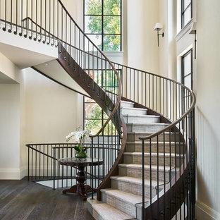 Bild på en stor vintage svängd trappa, med heltäckningsmatta, sättsteg med heltäckningsmatta och räcke i metall